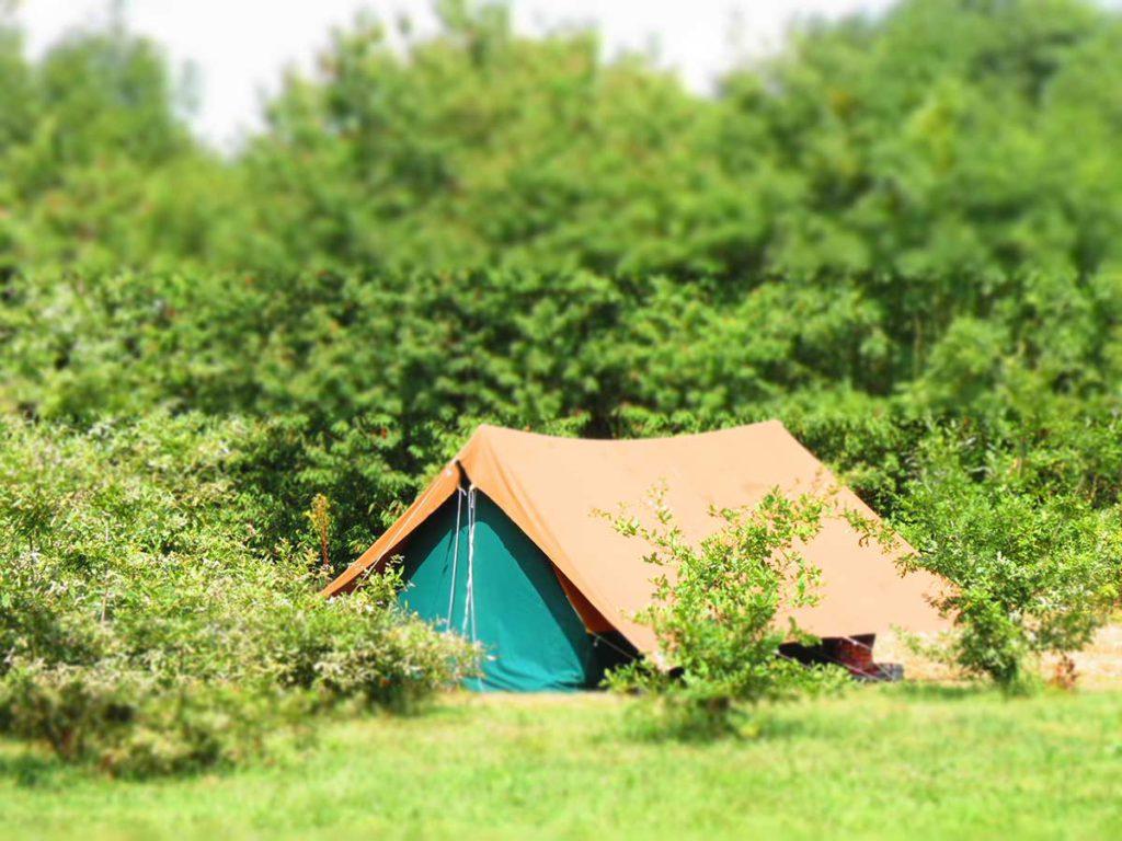 Emplacement de camping tente