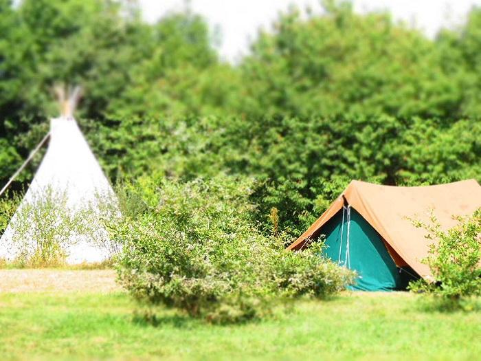 Camping calme près du Puy du Fou